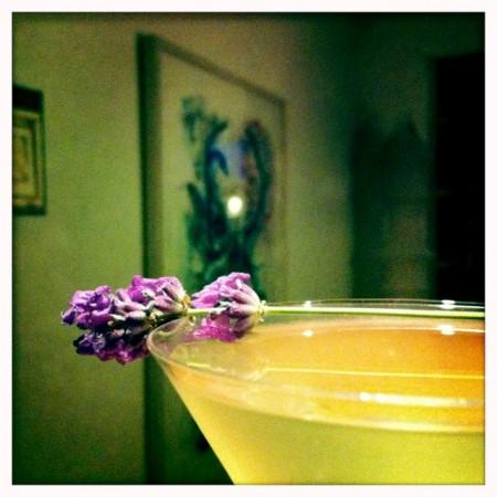 Lavender_Martini_No_6